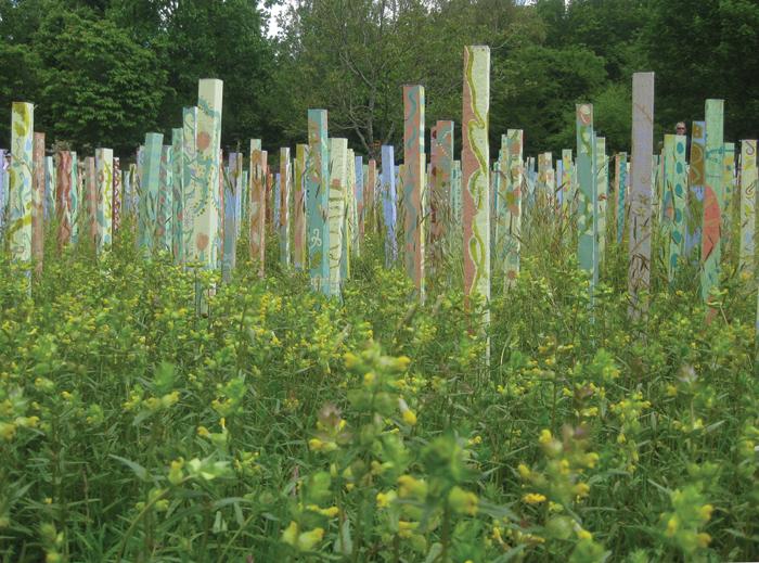 Through the Garden, Rosemoor RHS, 2010